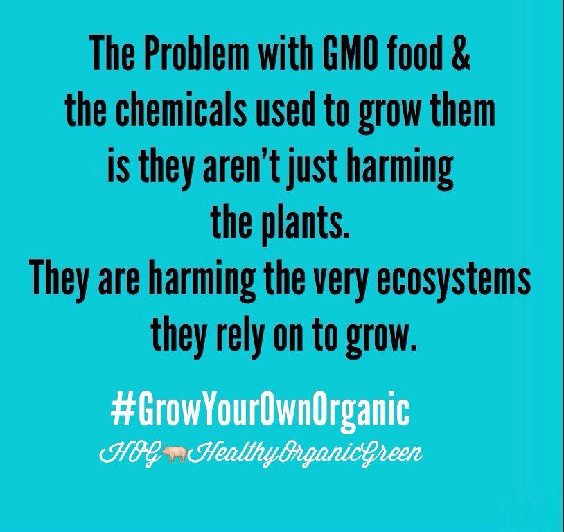 Grow Your Own Organic Food.