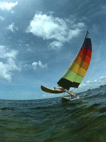 Hobie 16     always loved the tequila sunrise sail colours | Hobie