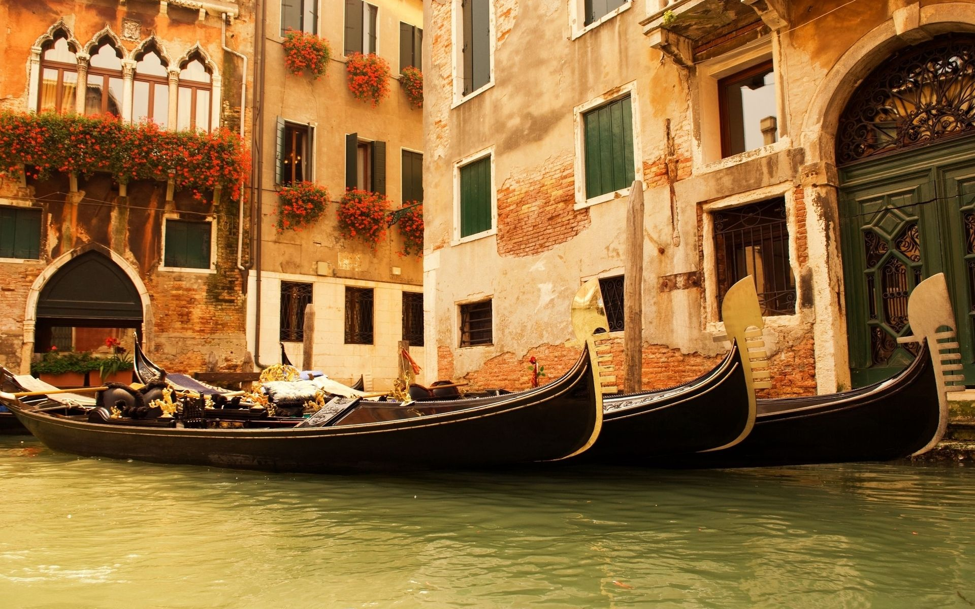 Venice Baby Image Detail For Venice Italy Wallpaper