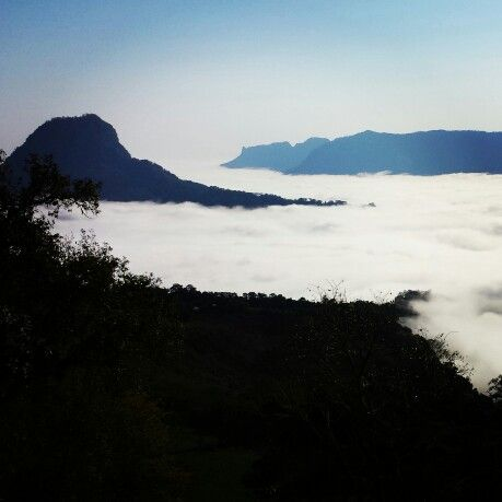 Resultado de imagen para tlanchinol neblina