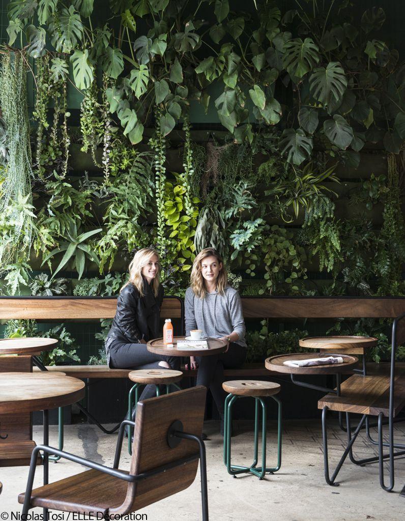 Verve Coffee Cafe Ambiance Jungle Cafe Interior Design Cafe Plants Cafe Design