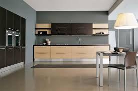 Resultado de imagen para contemporary kitchens design