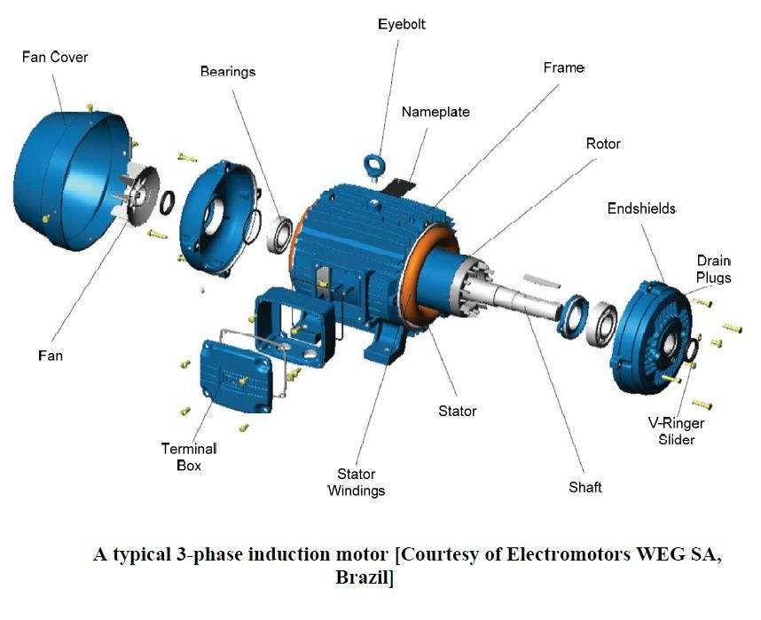 A typical 3-phase #induction motor #EEE #ECE | Electrical ...