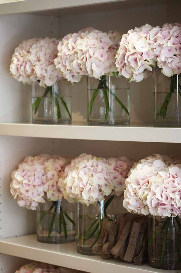 Best hydrangea vase ideas on pinterest