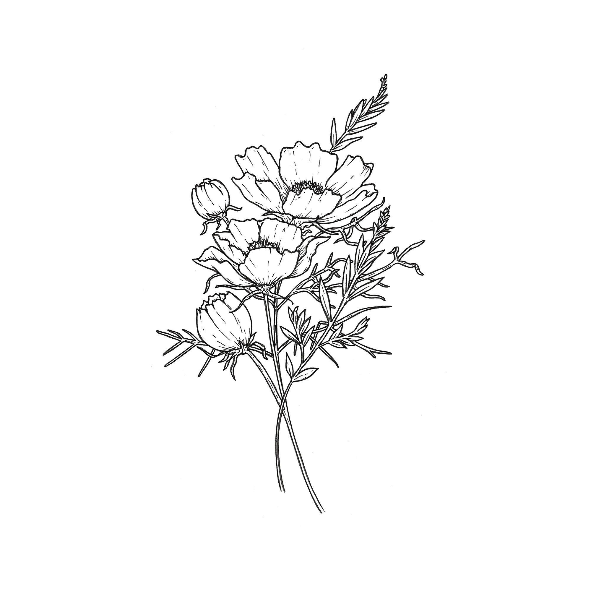 Image Result For Cosmos Flower Tattoo Birth Flower Tattoos Cosmos Tattoo Tattoos