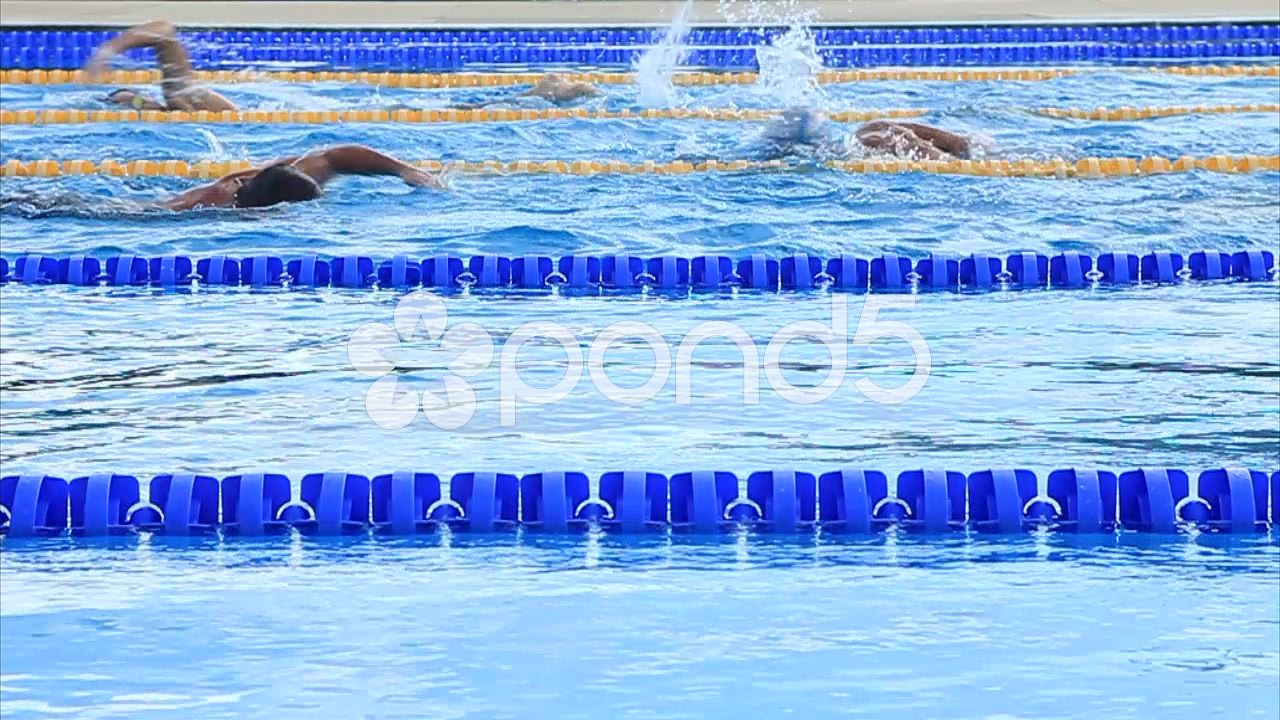 #Swimmers #Training #Outdoor #Olympic Size #Swimming #Pool #Lanes #
