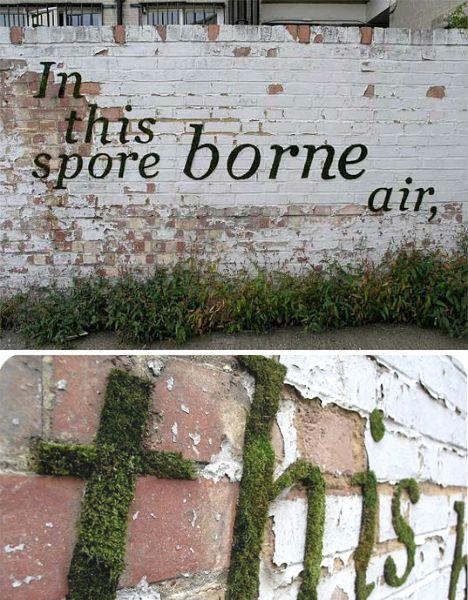 Transcending Tags 16 Typographic Works Of Urban Art Moskunst