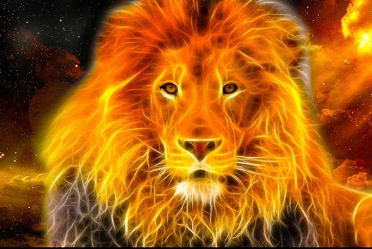 """Résultat de recherche d'images pour """"anime fire lion"""""""