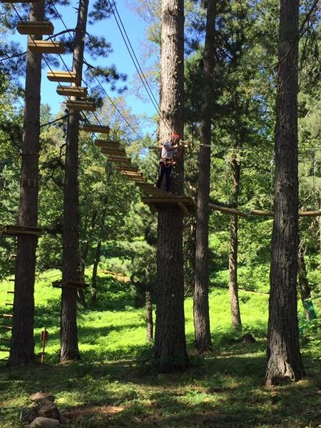 Parco Avventura Principe  #GreenWhereabouts #parco #avventura #parcoavventura #natura #alberi #bosco #trekking #divertimento