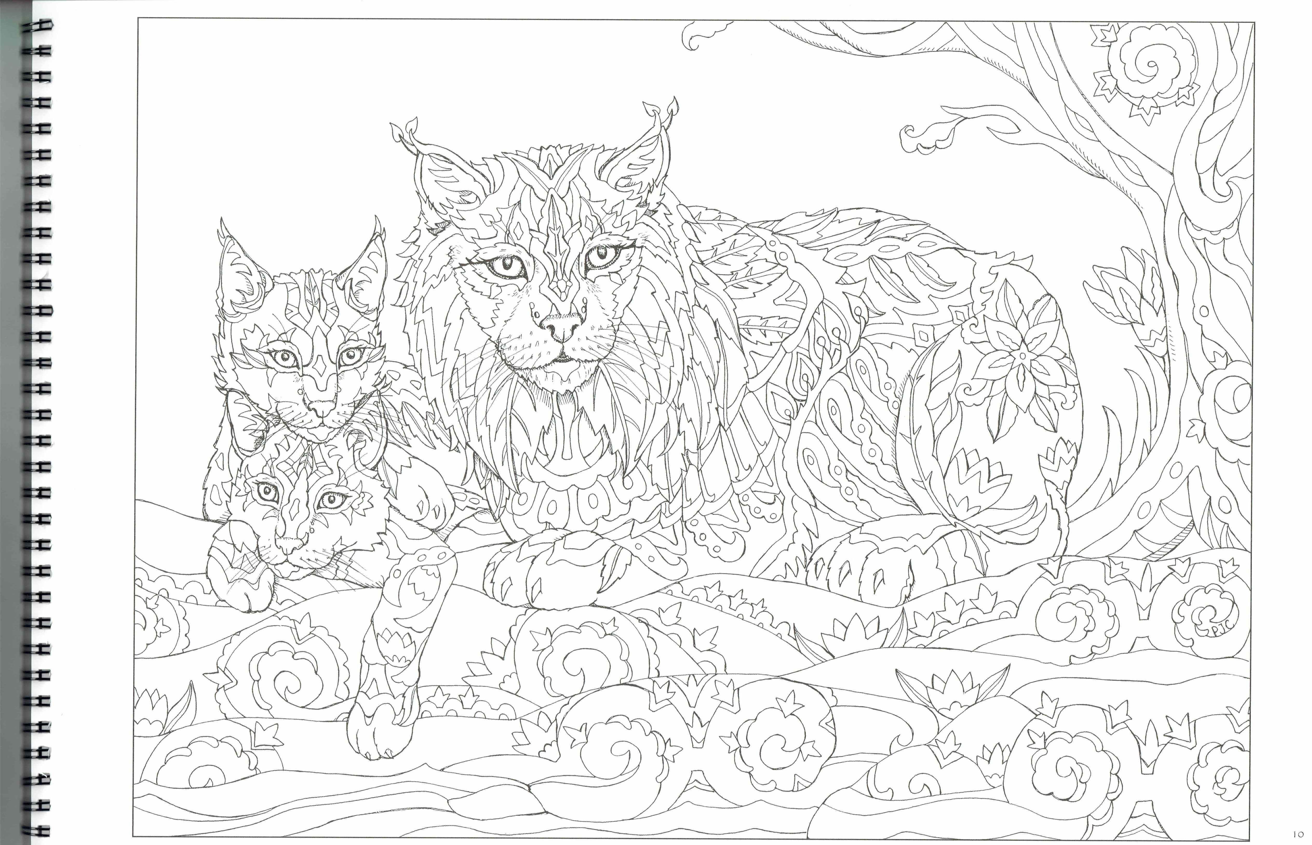 this will print on 11x17 just as nice as 8.5x11. lynx