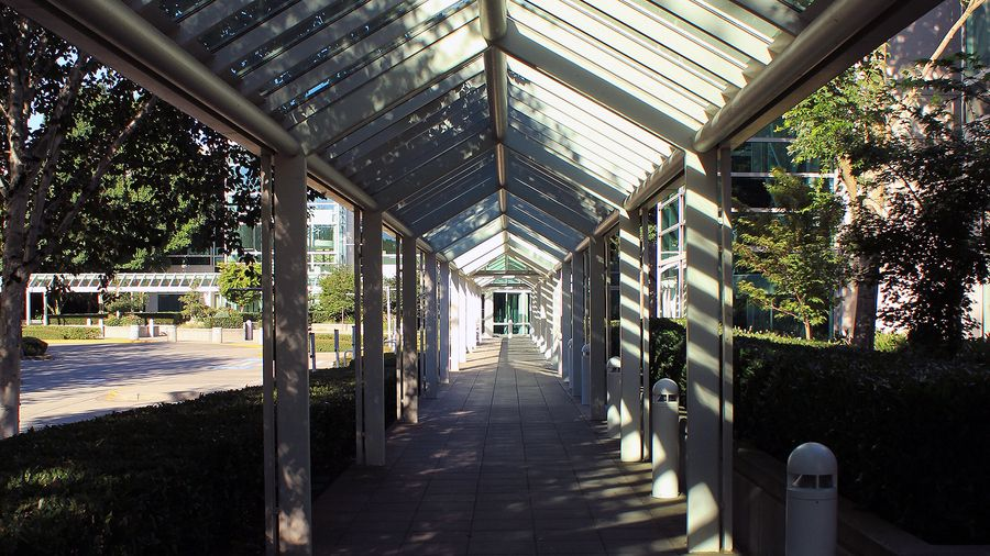 Outside of my office is this covered walkway. The lines and light and shadow created by the sun are very interesting to me.