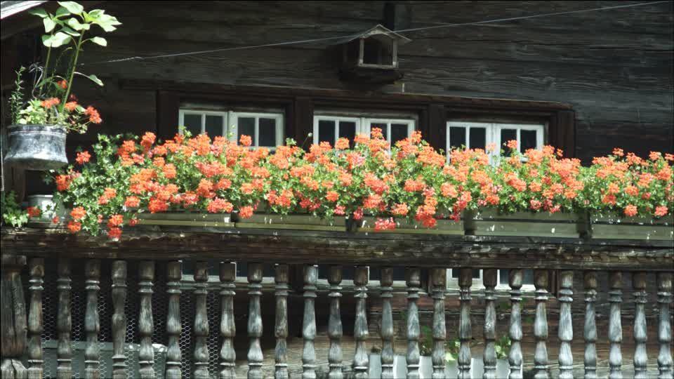 Bauernhaus / Dorf / Schweiz | 4K Stock Video 214-273-579 | Framepool Stock Footage
