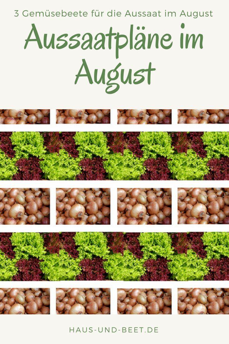 Aussaatpläne im August - Baue Gemüse morgen an! - Haus und Beet