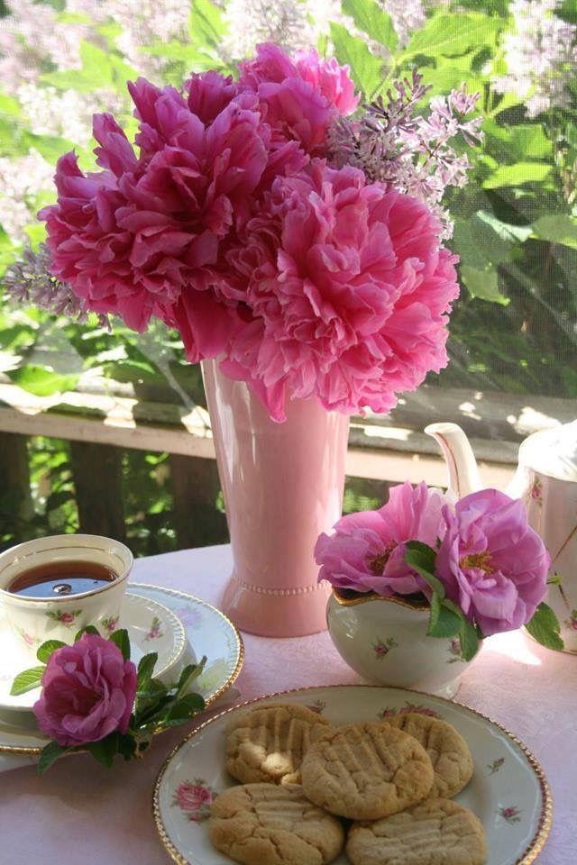 Pin de Rossy Olies en Tardes de té... Rosas, Ana rosa