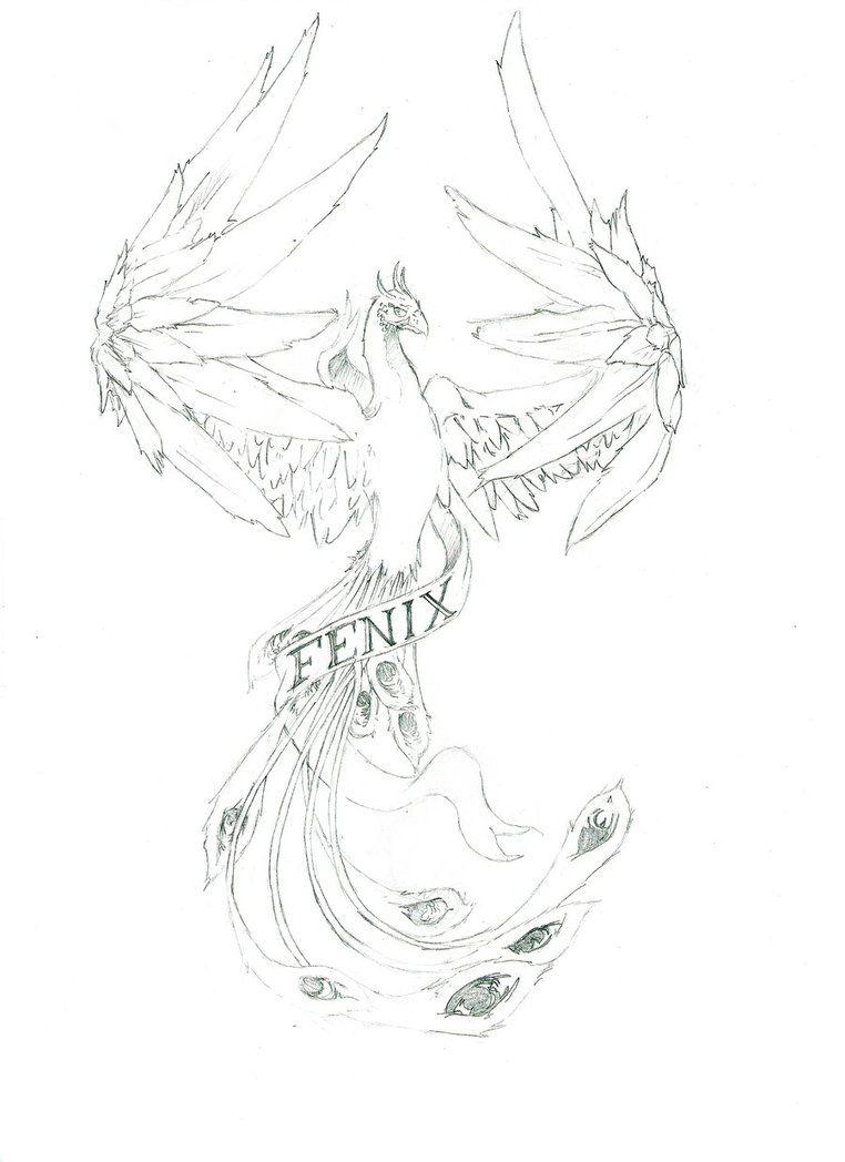 Desenho Da Ave Fenix Para Pintar Com Imagens Desenhos De Fenix