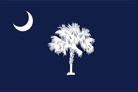 South Carolina Flag In 2020 South Carolina Flag South Carolina State Flag Pledge To The Flag