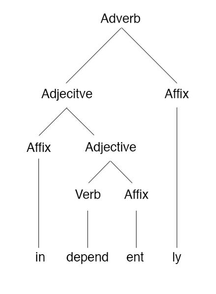 Morpheme Based Morphology Tree Of The Word Independently Morphology Linguistics Linguistics Adjectives Verbs