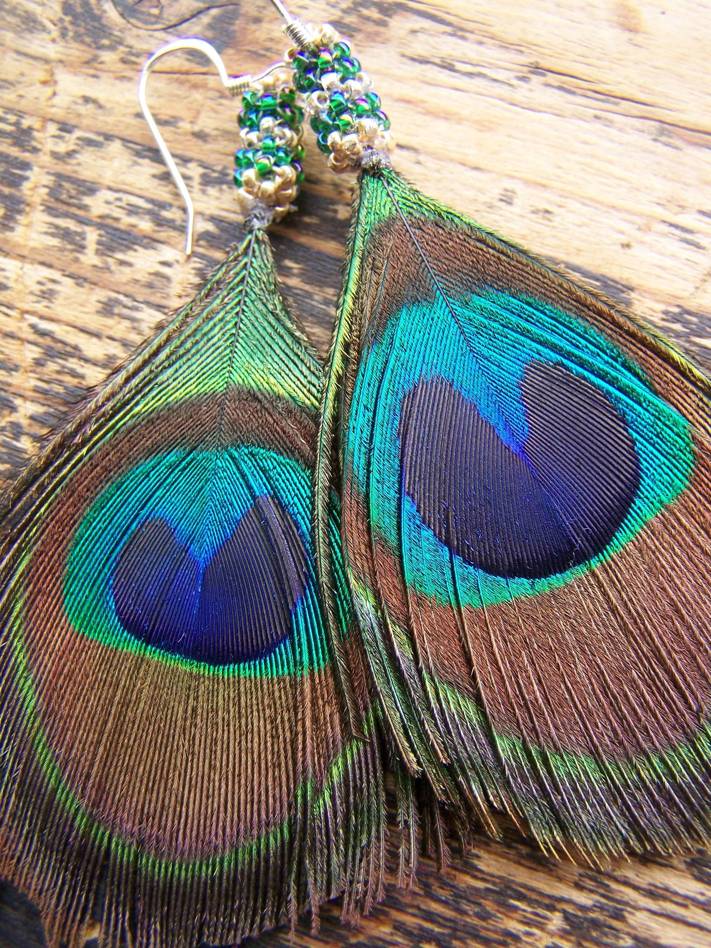Gorgeous idea for peacock feathers.