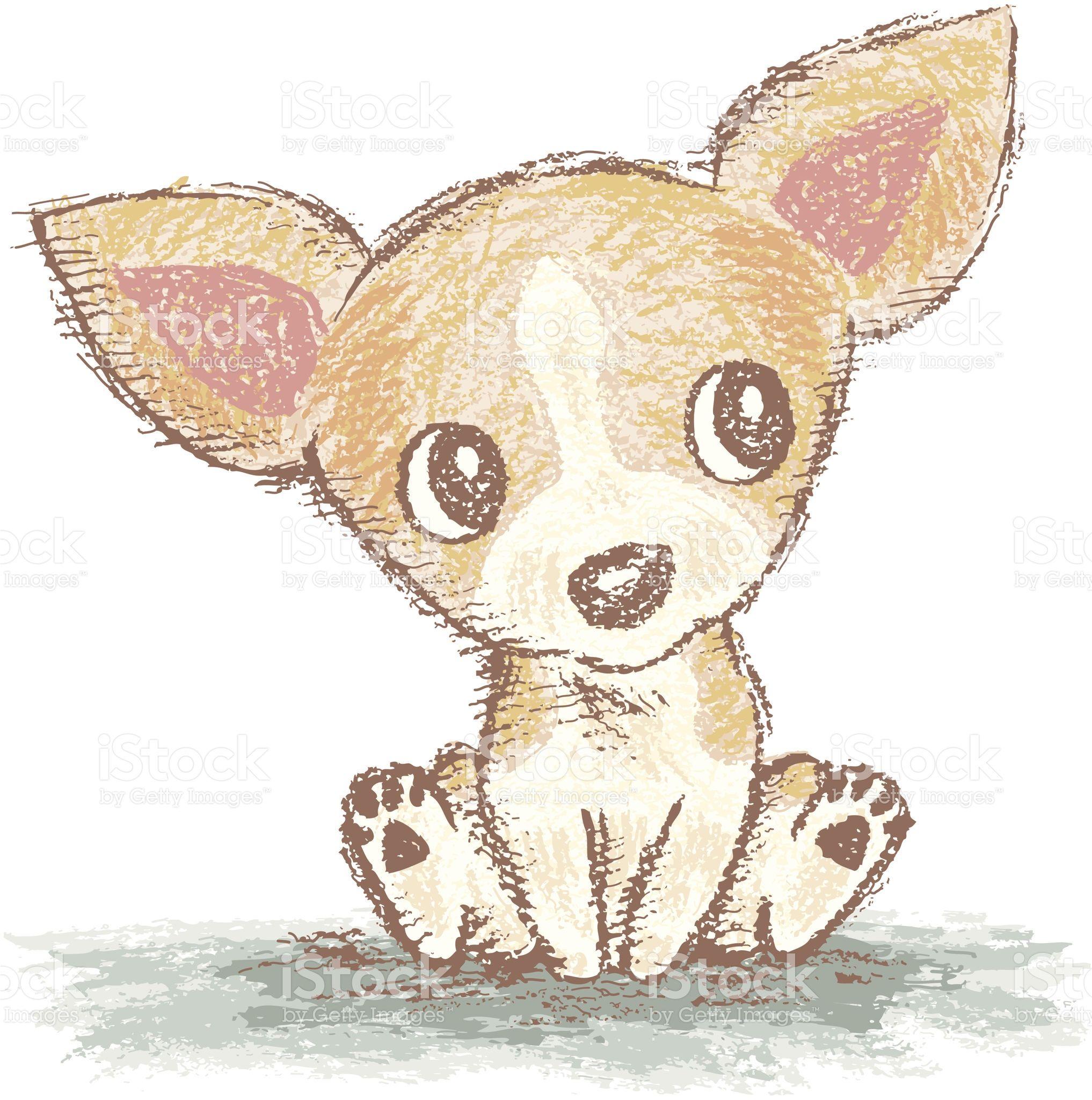 Chihuahua Is Sitting Chihuahua Drawing Chihuahua Art