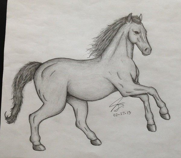 Simple Horse Pencil Drawings Pencil Drawing Projects To Try In