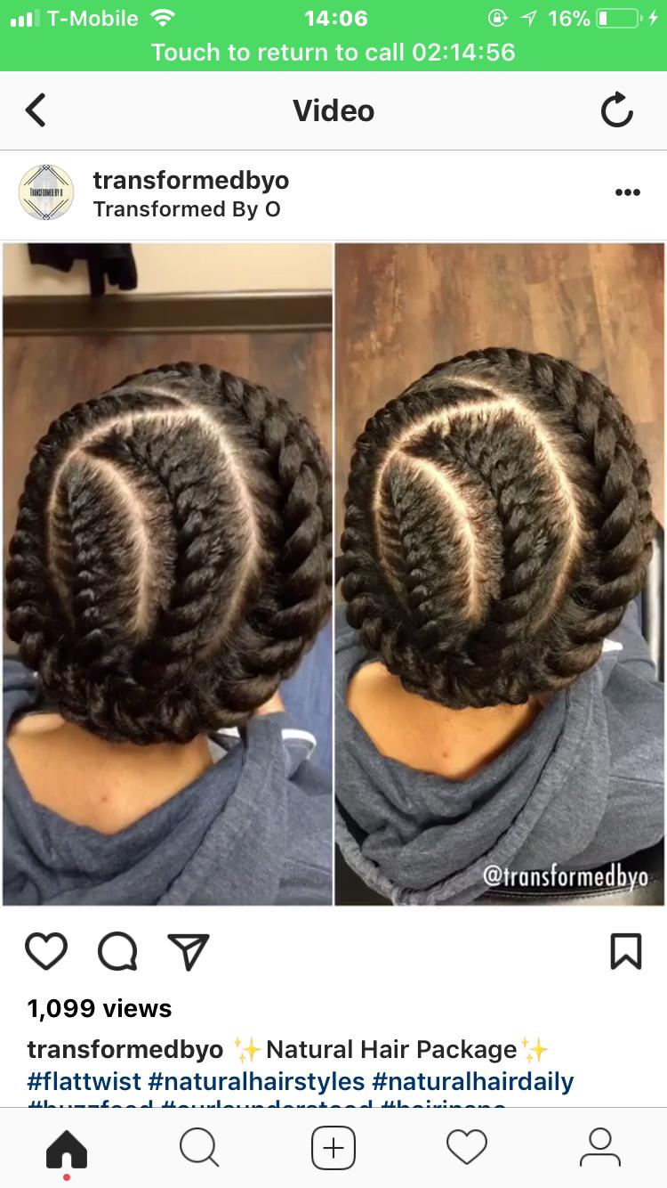 2 strand flat twist updo black