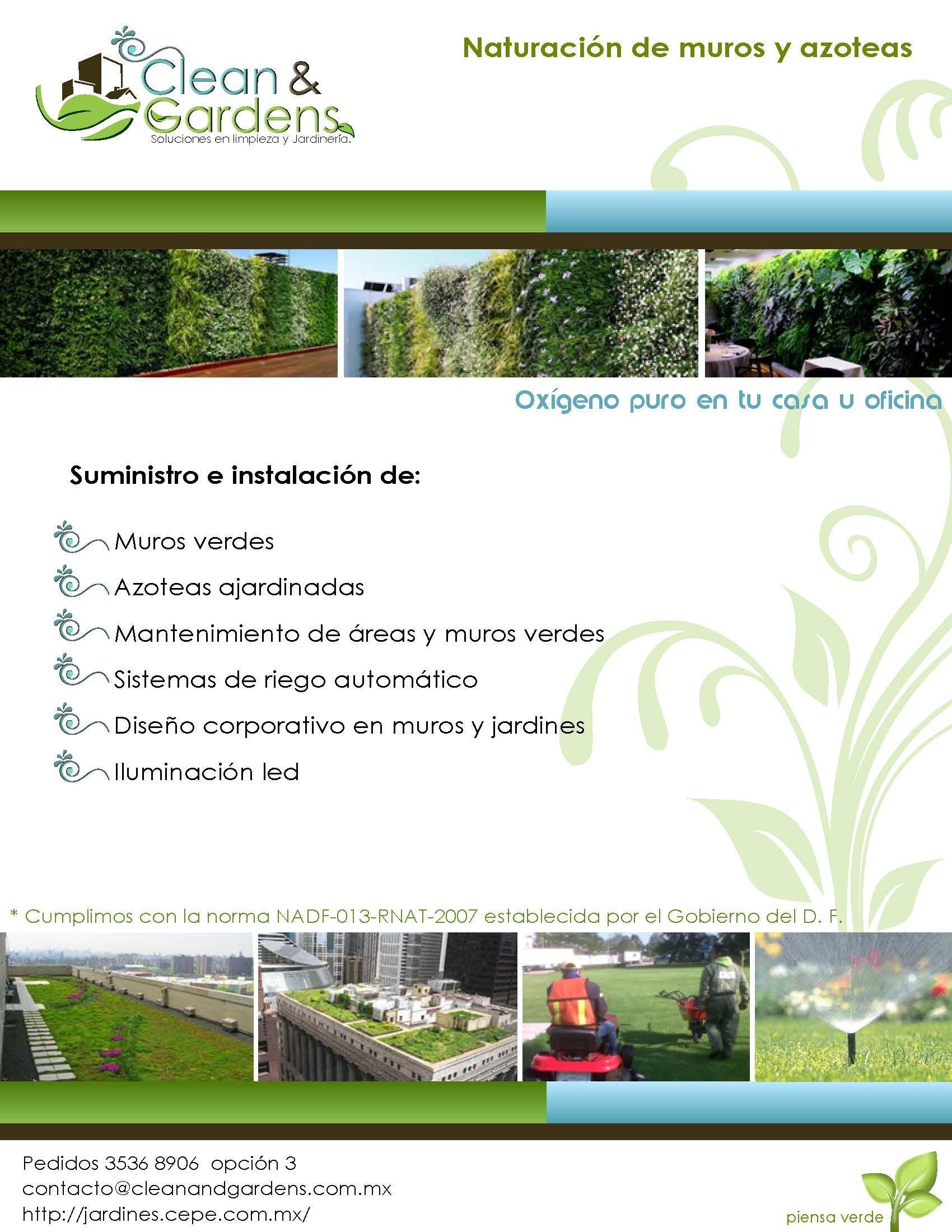 Muro Verde, Azotea Ajardinada