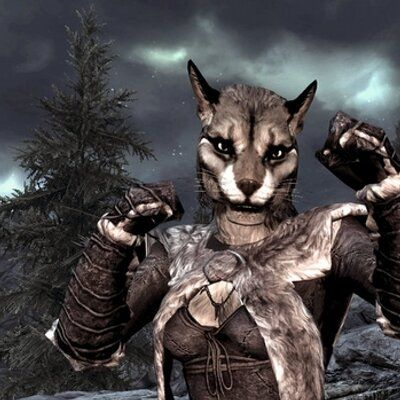 Pin By Inodogs On Path O Logic Skyrim Cat Fantasy Creatures Character Design
