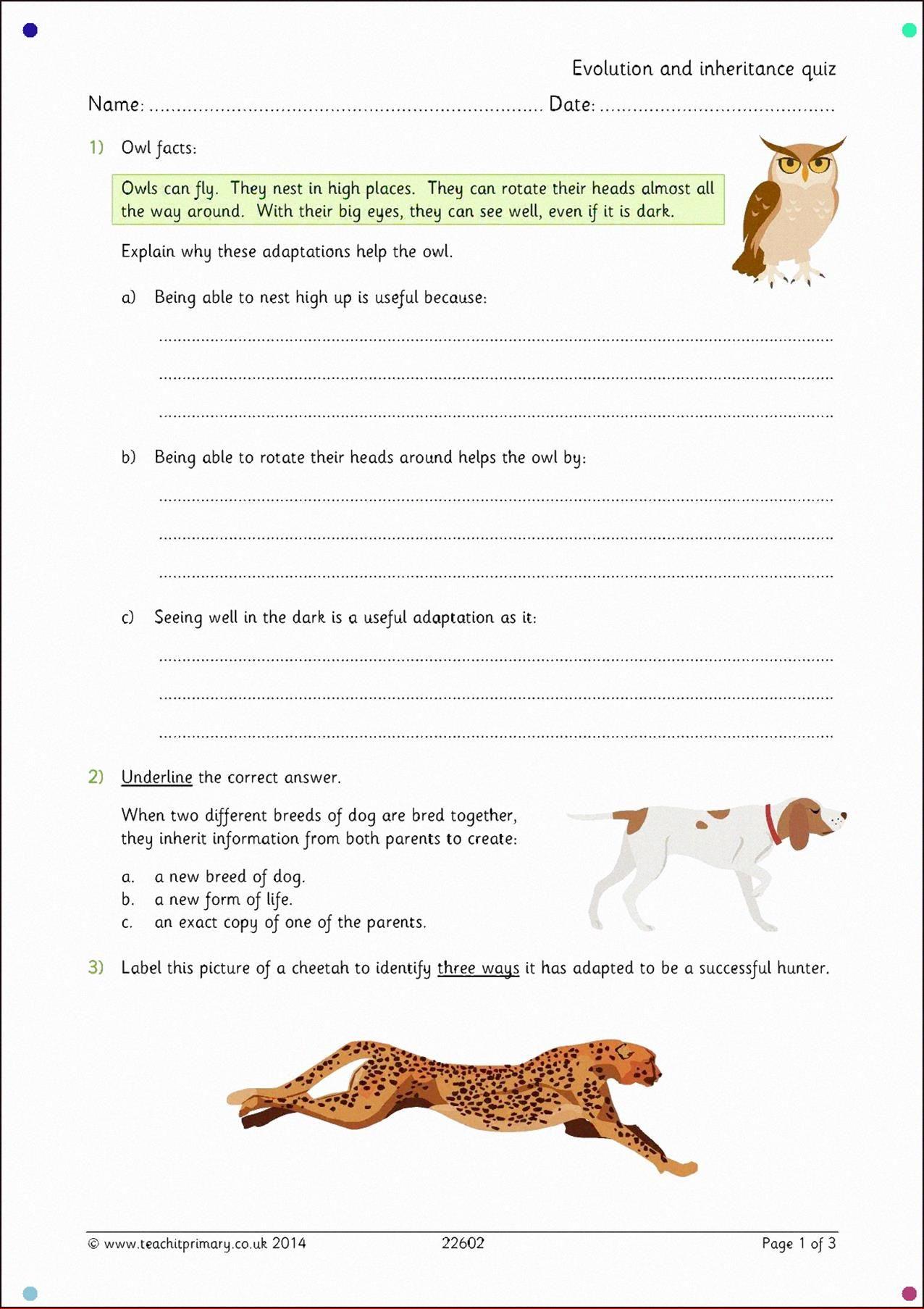 Evolution And Inheritance Quiz