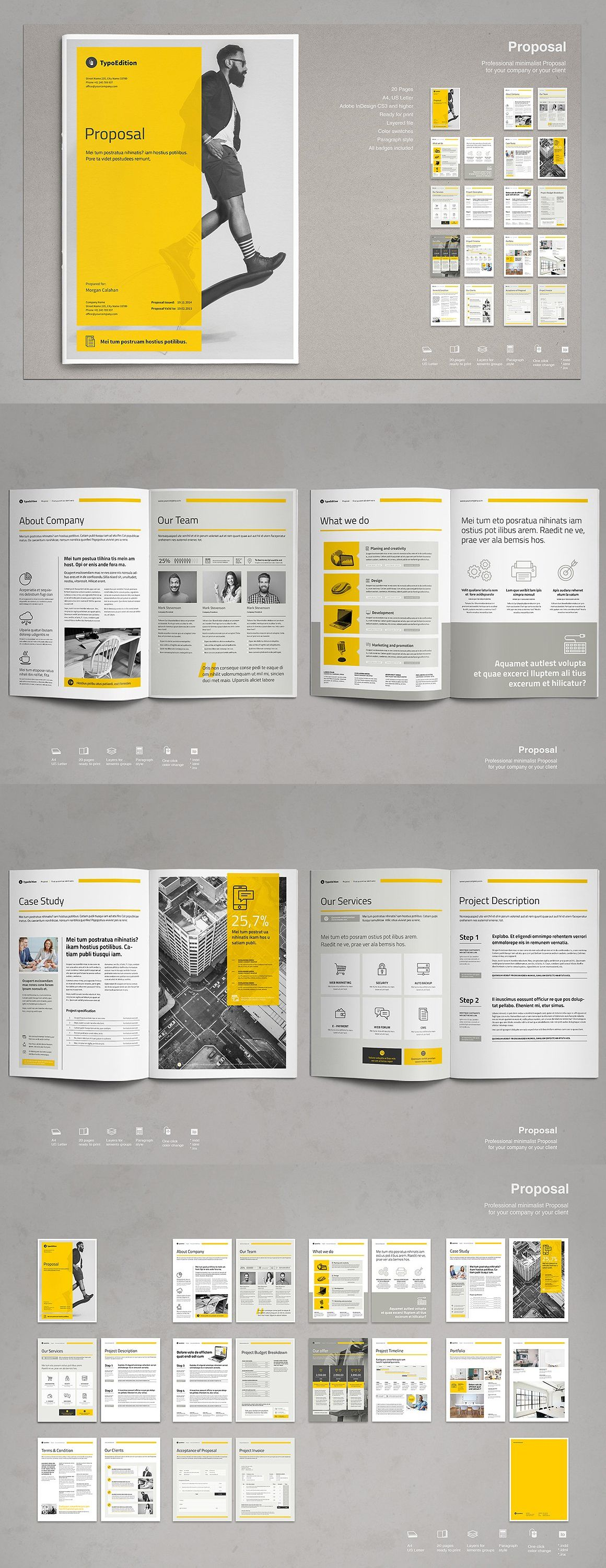 Commercial Proposal Format Beauteous Business Proposal  Business Proposal Template Business Proposal .