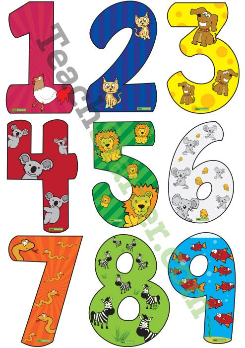 Numbers 0-9 with Animal Values | Teach Starter - Teacher Resources ...