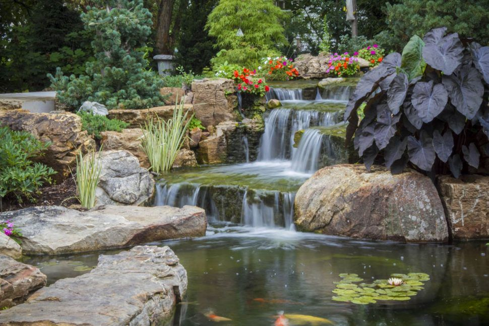 Backyard The Healing Power Water Features Waterfall And Pond Feature Ponds Pump Kits Brisban Ponds Backyard Water Features In The Garden Backyard Water Feature