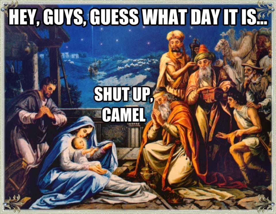 Hump day camel Christmas | Christmas | Pinterest | Funny things and ...