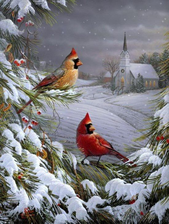 Cardinals in the snow...a masterpiece ♥♥