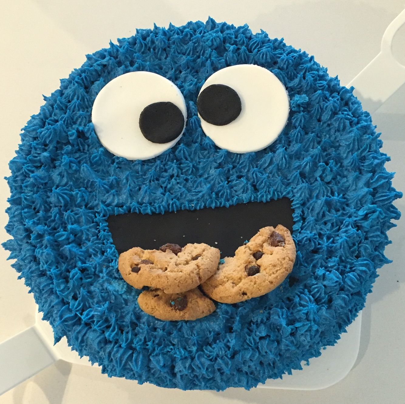 Cookie Monster Birthday Cake Sesame Street Party Queques