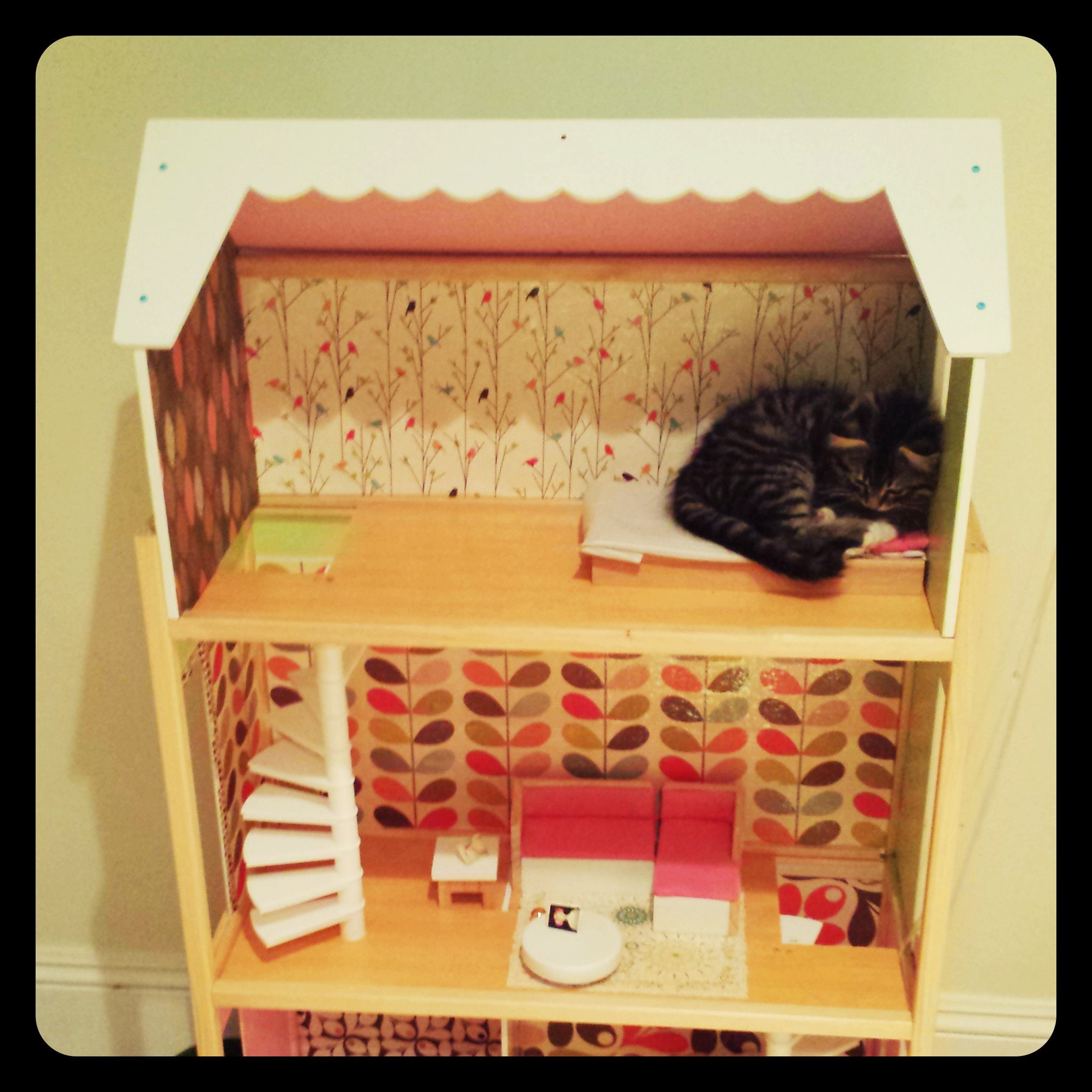 I Made A Dollhouse For My Niece But Huxley The Kitten Has Other Plans For It Doll House Very Cute Dogs Sleeping Kitten