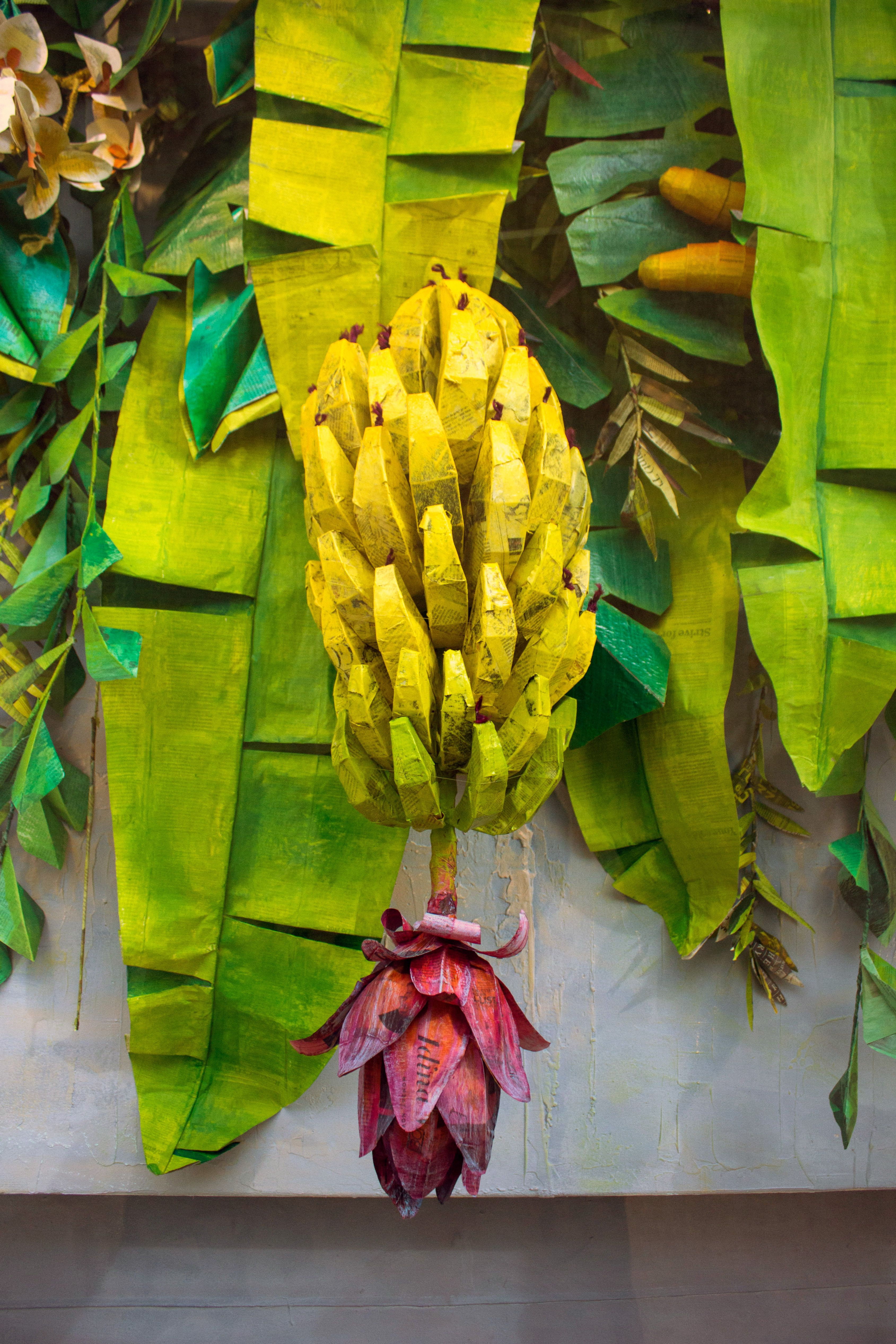 Summer Props & Display   rainforest   Anthropologie ...