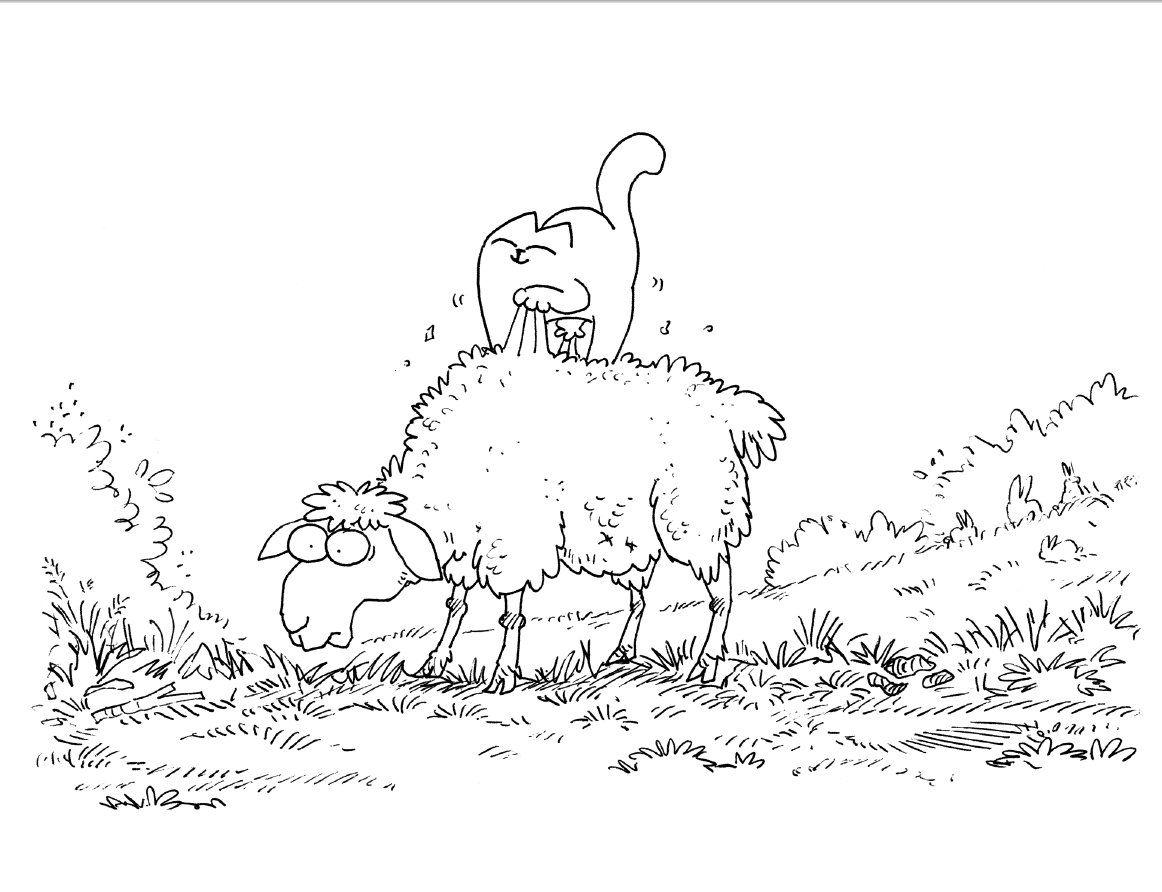 Sheep Cat Art