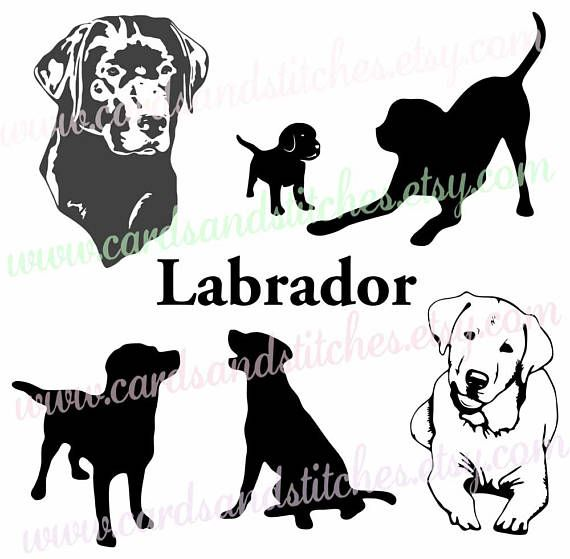 Golden Retriever Svg Golden Retriever Silhouette Dog Clipart