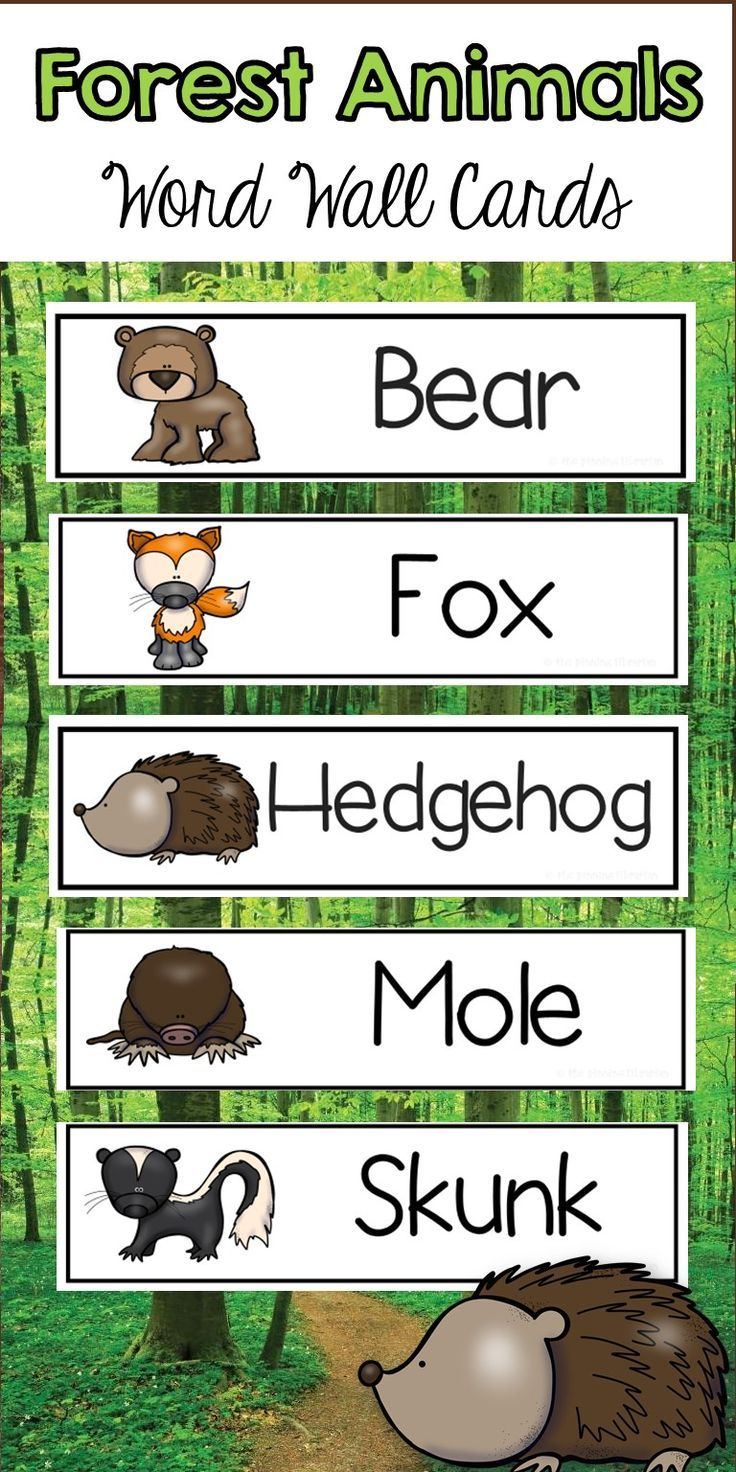 Are your students learning about Forest animals? These word wall ...