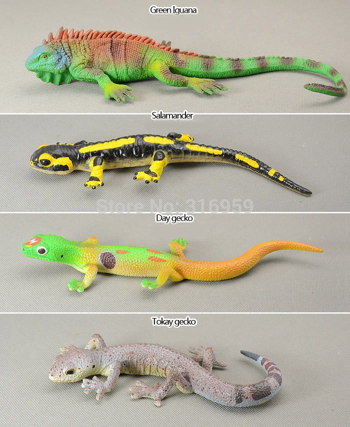 Lizard Toys For Boys : Compare prices on plastic lizard toys online shopping buy