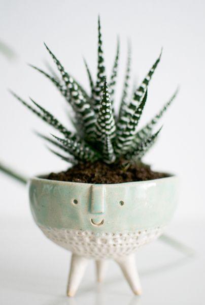 Make your own urban jungle zimmerpflanzen pflegen f r hipster hipster zimmerpflanzen und - Zimmerpflanzen groay ...