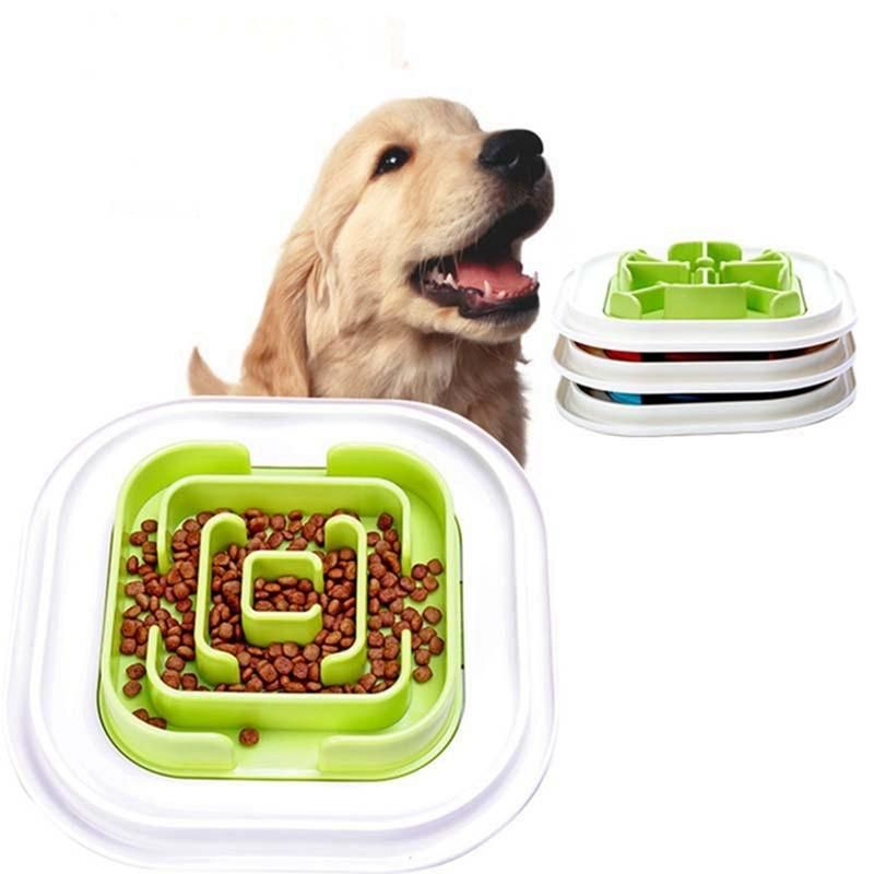 Want To Buy A Personalized Bowl For Your Dog Max And Maci Store