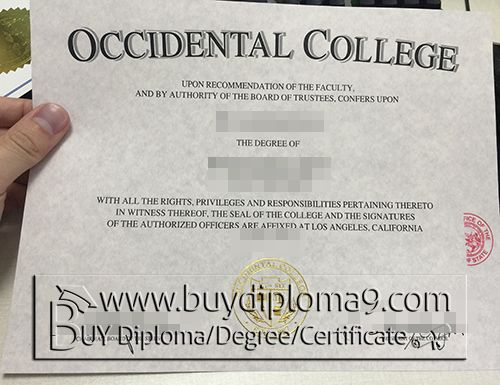 fake associate degree associate degree templates samples of fake high school diplomas and fake diplomas authentic