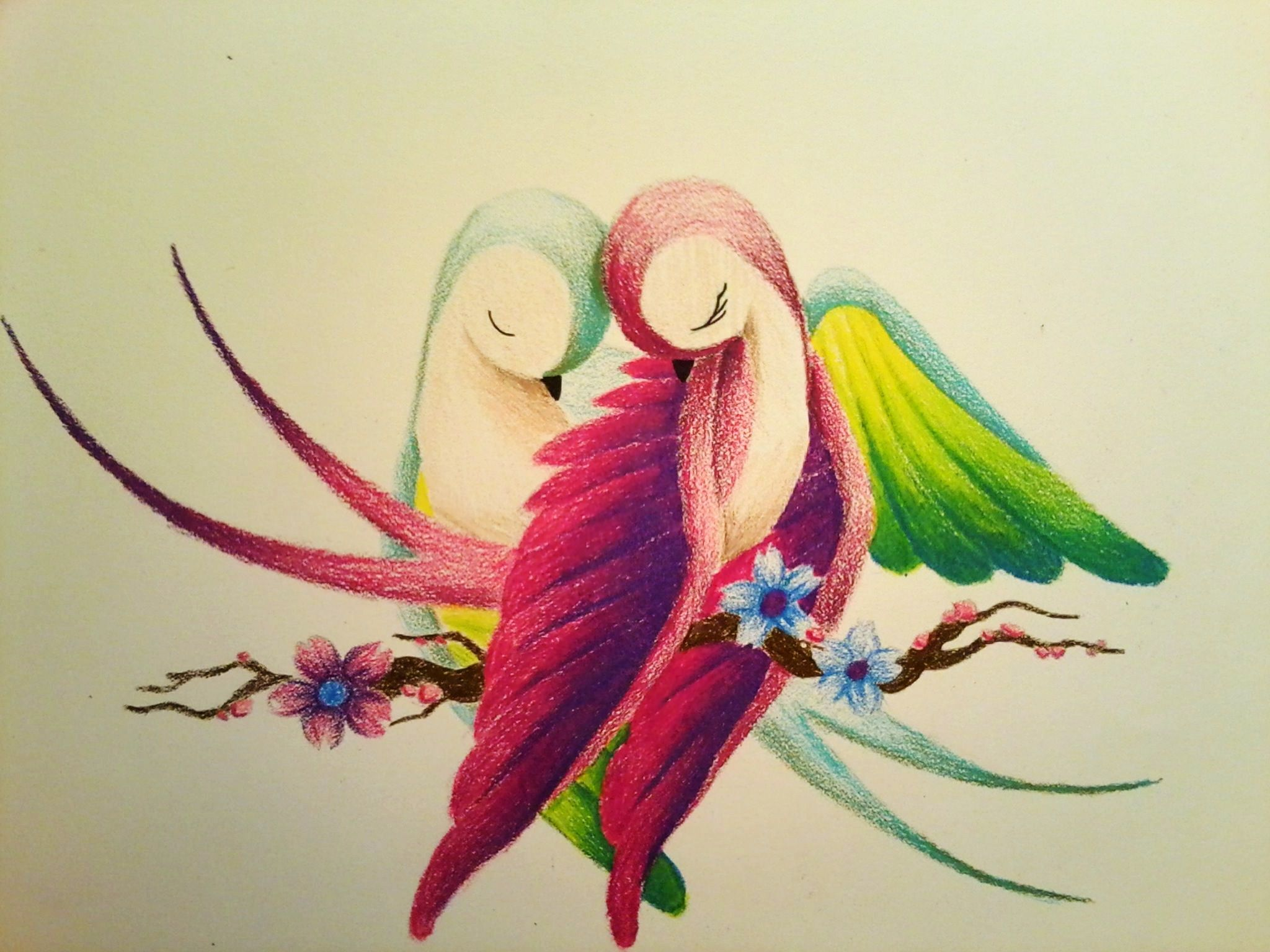 Related Image With Images Bird Drawings Pencil Drawings