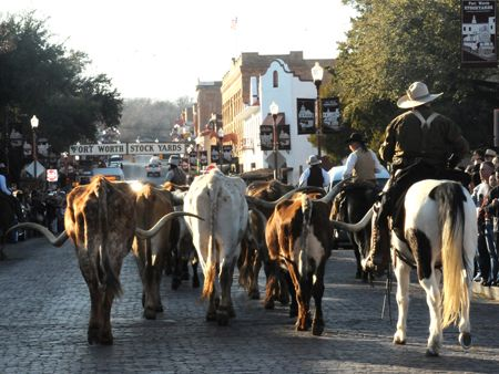Fort Worth Stock Show & Rodeo.  (Jan 18 - Feb 9)  Can't wait to take the girls to watch the parade and maybe pet some animals.  We already have our cowgirl outfits picked out.