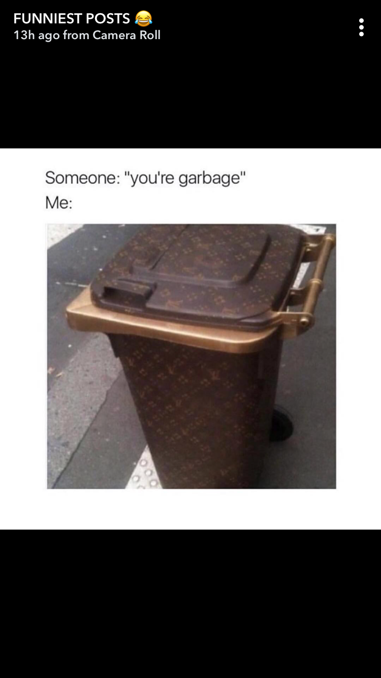 Pin By Cassie Rudd On Mood Louis Vuitton Funny Memes Vuitton