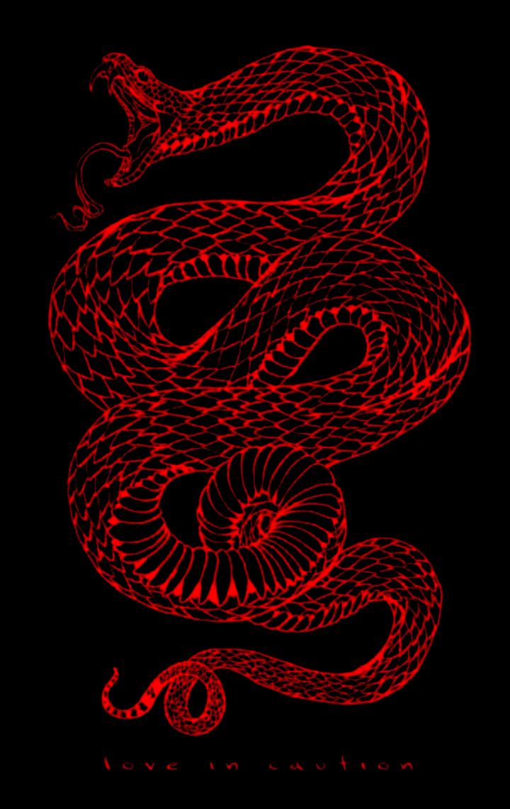 0y3037irc6la4an7mttjsrvn02u5ei Aesthetic Wallpapers Snake Wallpaper Edgy Wallpaper Trippy Wallpaper