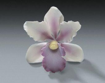 Última izquierda Rosa té africano orquídea goma goma flor