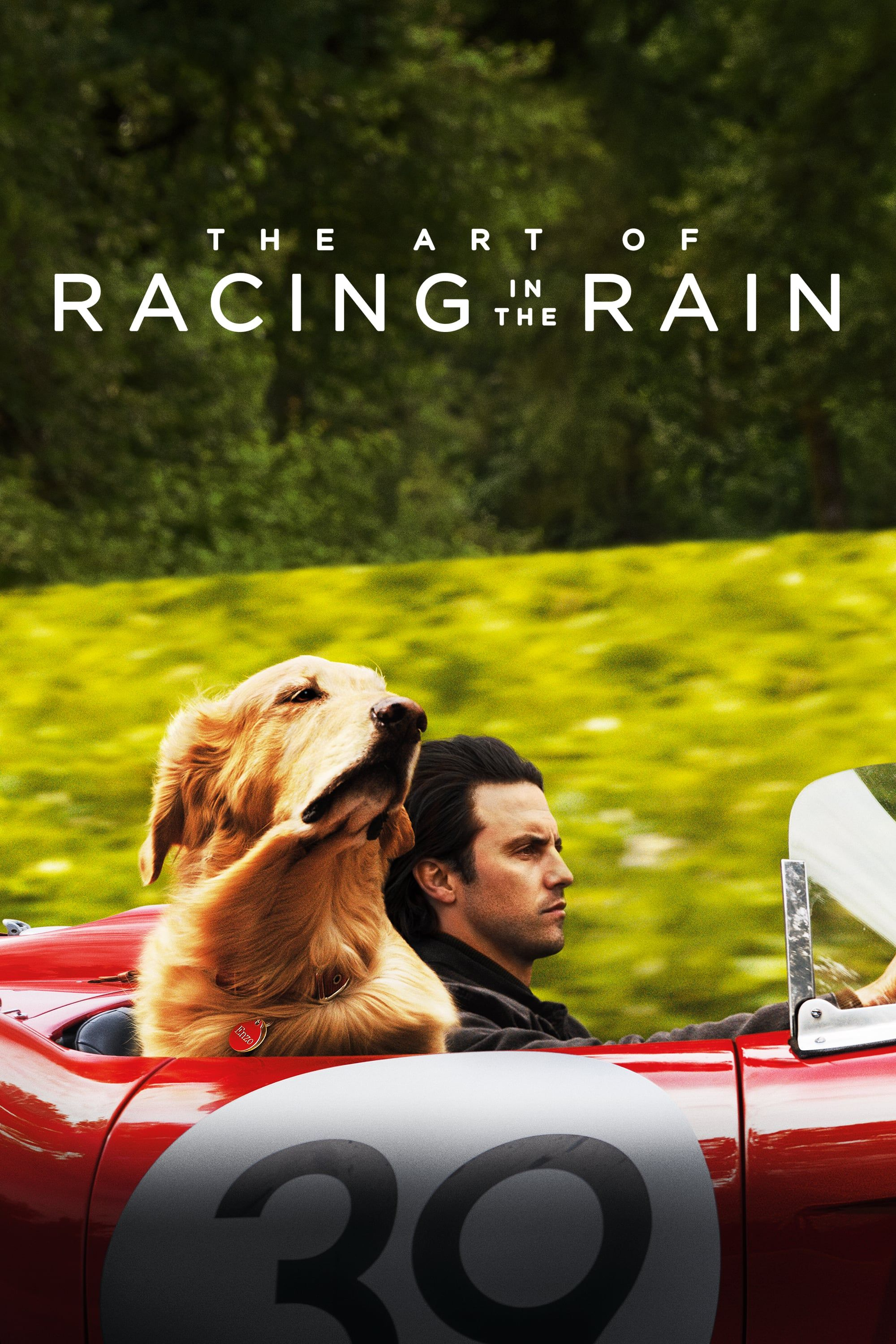 Hd 1080 The Art Of Racing In The Rain 8249 8801 9662 Film Complet Dubla Full Movies Full Movies Online Free The Rain Movie