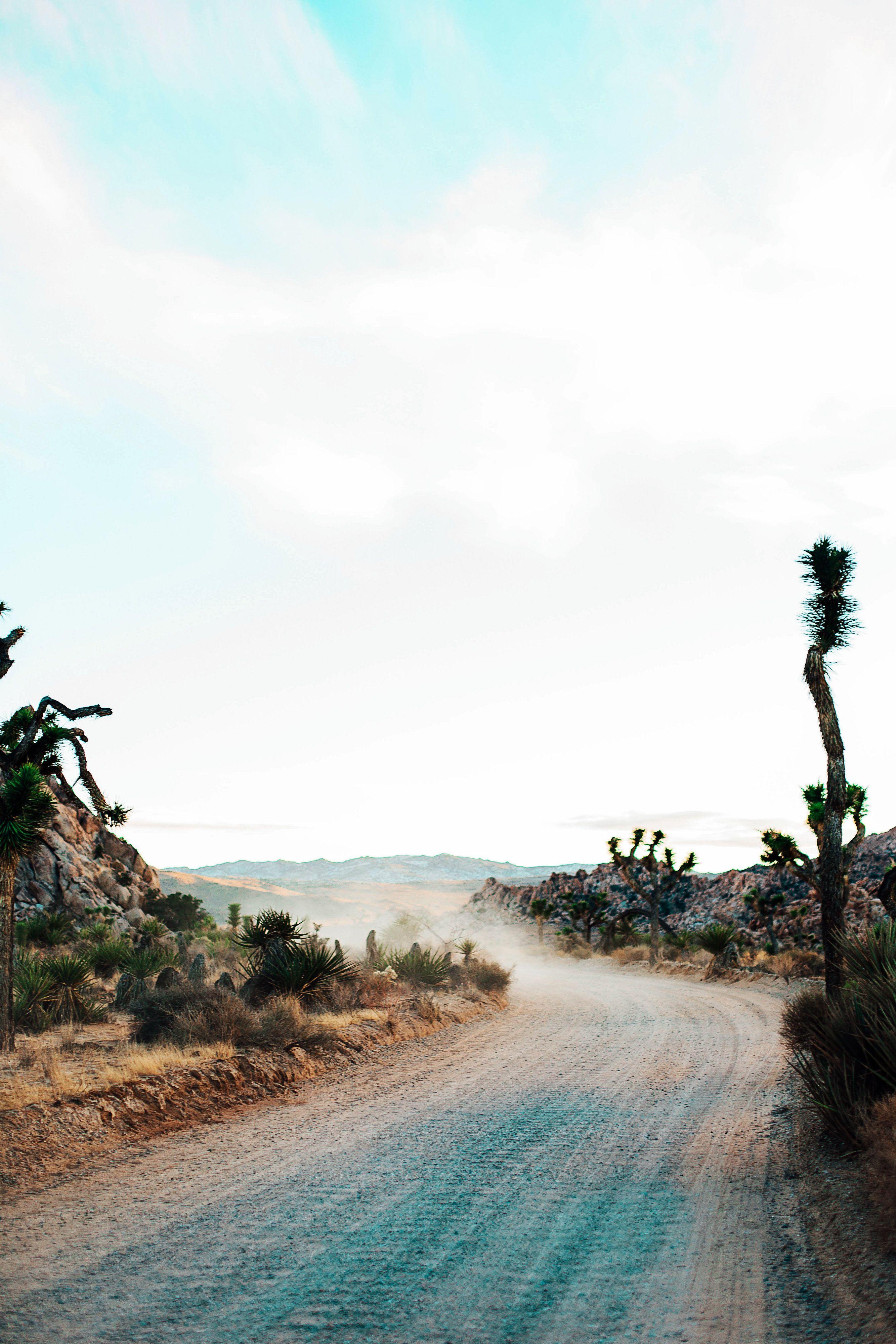 Dominos palm desert ca